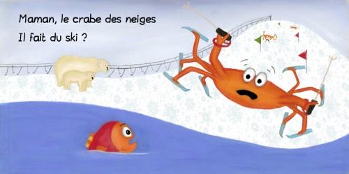 crabe 2.jpg